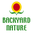 backyardnature.com is california nature, backyard nature, wildlife, california wildlife, backyard wildlife, butterflies, trees, flowers, and green business for consumers